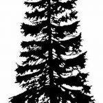 фото Эскизы тату ель от 23.04.2018 №009 - Sketches of a tattoo spruce - tatufoto.com