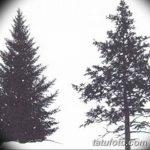 фото Эскизы тату ель от 23.04.2018 №020 - Sketches of a tattoo spruce - tatufoto.com