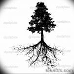 фото Эскизы тату ель от 23.04.2018 №021 - Sketches of a tattoo spruce - tatufoto.com