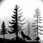 фото Эскизы тату ель от 23.04.2018 №022 - Sketches of a tattoo spruce - tatufoto.com
