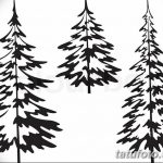 фото Эскизы тату ель от 23.04.2018 №037 - Sketches of a tattoo spruce - tatufoto.com