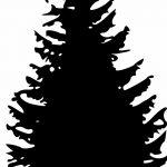 фото Эскизы тату ель от 23.04.2018 №043 - Sketches of a tattoo spruce - tatufoto.com