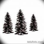 фото Эскизы тату ель от 23.04.2018 №048 - Sketches of a tattoo spruce - tatufoto.com