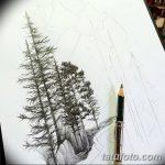 фото Эскизы тату ель от 23.04.2018 №054 - Sketches of a tattoo spruce - tatufoto.com