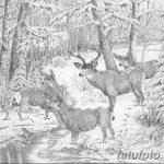 фото Эскизы тату ель от 23.04.2018 №065 - Sketches of a tattoo spruce - tatufoto.com