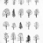 фото Эскизы тату ель от 23.04.2018 №074 - Sketches of a tattoo spruce - tatufoto.com