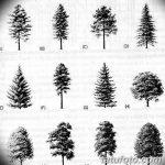 фото Эскизы тату ель от 23.04.2018 №077 - Sketches of a tattoo spruce - tatufoto.com