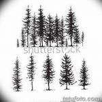 фото Эскизы тату ель от 23.04.2018 №080 - Sketches of a tattoo spruce - tatufoto.com