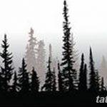 фото Эскизы тату ель от 23.04.2018 №092 - Sketches of a tattoo spruce - tatufoto.com