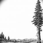 фото Эскизы тату ель от 23.04.2018 №104 - Sketches of a tattoo spruce - tatufoto.com