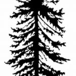 фото Эскизы тату ель от 23.04.2018 №112 - Sketches of a tattoo spruce - tatufoto.com