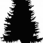 фото Эскизы тату ель от 23.04.2018 №124 - Sketches of a tattoo spruce - tatufoto.com