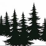 фото Эскизы тату ель от 23.04.2018 №130 - Sketches of a tattoo spruce - tatufoto.com