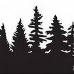 фото Эскизы тату ель от 23.04.2018 №134 - Sketches of a tattoo spruce - tatufoto.com