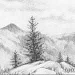 фото Эскизы тату ель от 23.04.2018 №142 - Sketches of a tattoo spruce - tatufoto.com