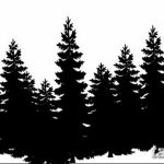 фото Эскизы тату ель от 23.04.2018 №144 - Sketches of a tattoo spruce - tatufoto.com