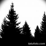 фото Эскизы тату ель от 23.04.2018 №150 - Sketches of a tattoo spruce - tatufoto.com