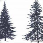 фото Эскизы тату ель от 23.04.2018 №158 - Sketches of a tattoo spruce - tatufoto.com 346345