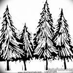 фото Эскизы тату ель от 23.04.2018 №161 - Sketches of a tattoo spruce - tatufoto.com