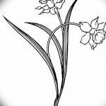 фото Эскизы тату нарцисс от 18.04.2018 №015 - Sketches of daffodil - tatufoto.com