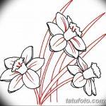 фото Эскизы тату нарцисс от 18.04.2018 №017 - Sketches of daffodil - tatufoto.com