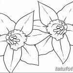фото Эскизы тату нарцисс от 18.04.2018 №026 - Sketches of daffodil - tatufoto.com
