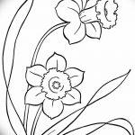 фото Эскизы тату нарцисс от 18.04.2018 №027 - Sketches of daffodil - tatufoto.com