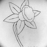 фото Эскизы тату нарцисс от 18.04.2018 №037 - Sketches of daffodil - tatufoto.com