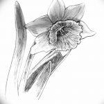 фото Эскизы тату нарцисс от 18.04.2018 №039 - Sketches of daffodil - tatufoto.com