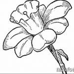 фото Эскизы тату нарцисс от 18.04.2018 №052 - Sketches of daffodil - tatufoto.com