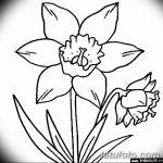 фото Эскизы тату нарцисс от 18.04.2018 №053 - Sketches of daffodil - tatufoto.com