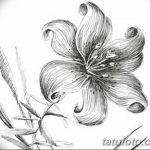 фото Эскизы тату нарцисс от 18.04.2018 №056 - Sketches of daffodil - tatufoto.com