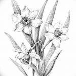 фото Эскизы тату нарцисс от 18.04.2018 №057 - Sketches of daffodil - tatufoto.com