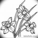фото Эскизы тату нарцисс от 18.04.2018 №058 - Sketches of daffodil - tatufoto.com