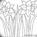 фото Эскизы тату нарцисс от 18.04.2018 №060 - Sketches of daffodil - tatufoto.com