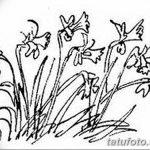 фото Эскизы тату нарцисс от 18.04.2018 №061 - Sketches of daffodil - tatufoto.com