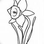 фото Эскизы тату нарцисс от 18.04.2018 №065 - Sketches of daffodil - tatufoto.com