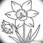 фото Эскизы тату нарцисс от 18.04.2018 №068 - Sketches of daffodil - tatufoto.com