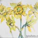 фото Эскизы тату нарцисс от 18.04.2018 №076 - Sketches of daffodil - tatufoto.com