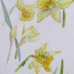 фото Эскизы тату нарцисс от 18.04.2018 №077 - Sketches of daffodil - tatufoto.com