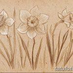 фото Эскизы тату нарцисс от 18.04.2018 №082 - Sketches of daffodil - tatufoto.com