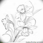 фото Эскизы тату нарцисс от 18.04.2018 №083 - Sketches of daffodil - tatufoto.com 347345354