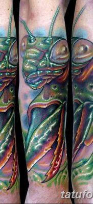 фото тату богомол от 20.04.2018 №003 – mantis tattoo – tatufoto.com