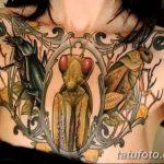 фото тату богомол от 20.04.2018 №005 - mantis tattoo - tatufoto.com