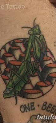 фото тату богомол от 20.04.2018 №006 – mantis tattoo – tatufoto.com
