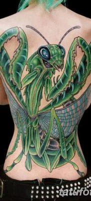 фото тату богомол от 20.04.2018 №011 – mantis tattoo – tatufoto.com