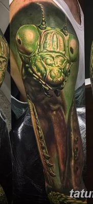 фото тату богомол от 20.04.2018 №016 – mantis tattoo – tatufoto.com