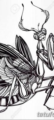 фото тату богомол от 20.04.2018 №016 – mantis tattoo – tatufoto.com 357335