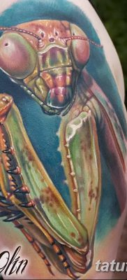 фото тату богомол от 20.04.2018 №025 – mantis tattoo – tatufoto.com