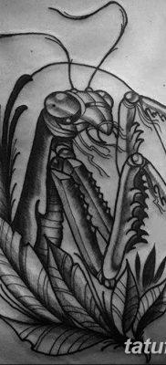 фото тату богомол от 20.04.2018 №026 – mantis tattoo – tatufoto.com